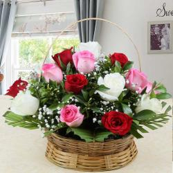 Basket Arrangement of Colorful Roses