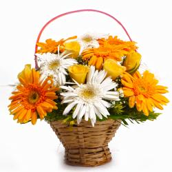 Brighten Basket of Yellow and White Gerberas with Yellow Roses