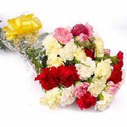 Colorful Twenty Five Carnation Hand Tied Bunch