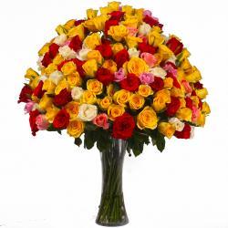 Multi Color 100 Roses Arranged in a Vase