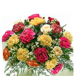 Multi color carnations Bouquet
