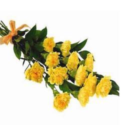Yellow Carnation Bouquet